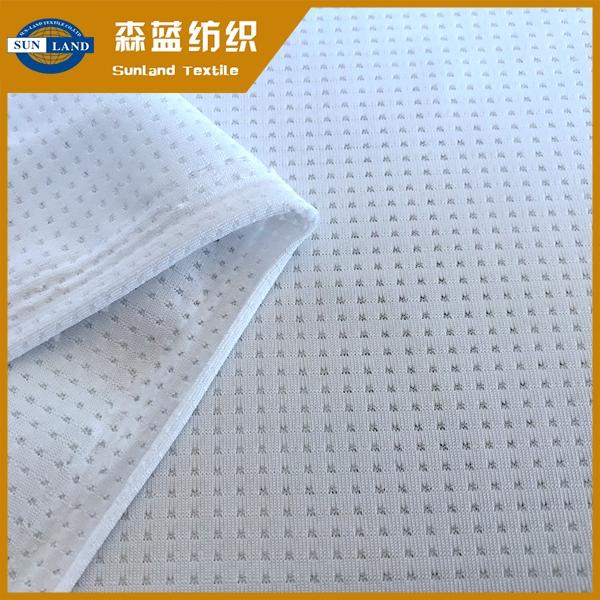半光氨纶网眼 Semi-gloss spandex mesh